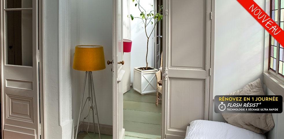 Peinture multi-surfaces portes, plinthes, fenêtres